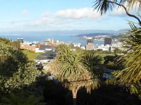 View from Wellington Botanic Gardens