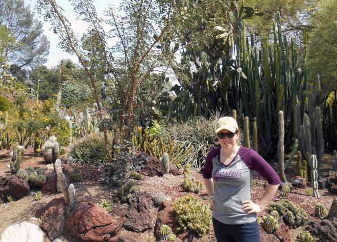 In the cactus garden at the Huntington Gardens.