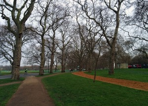 Early morning in Hyde Park.