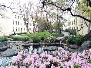 Caltech campus