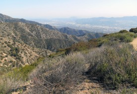 Wildwood Canyon, Burbank
