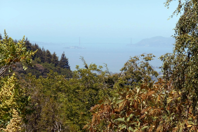 Golden Gate Bridge - just!