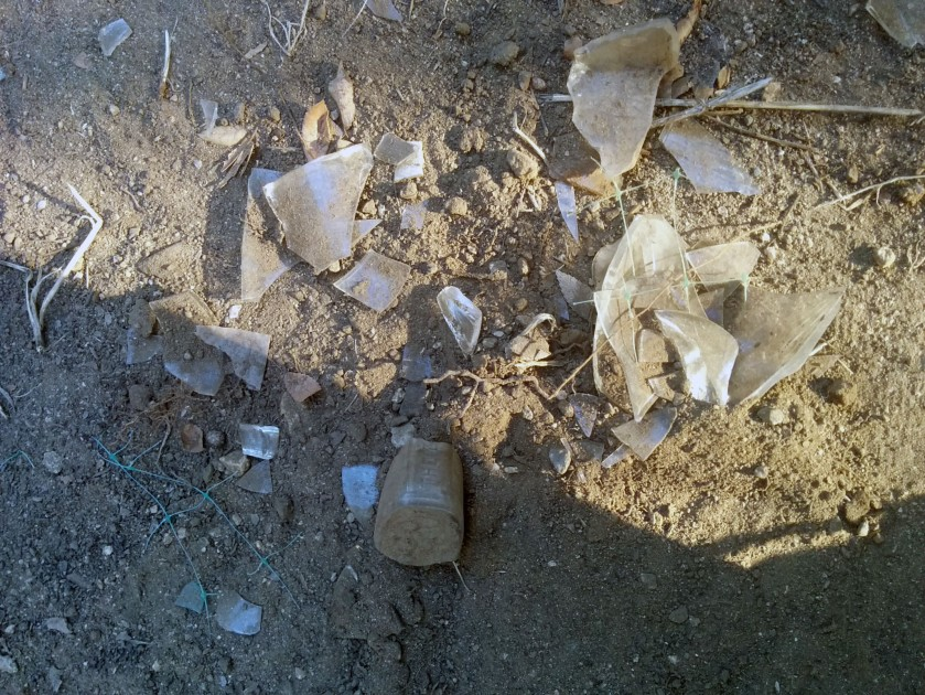 Dug up all this glass in about 12 inches of soil