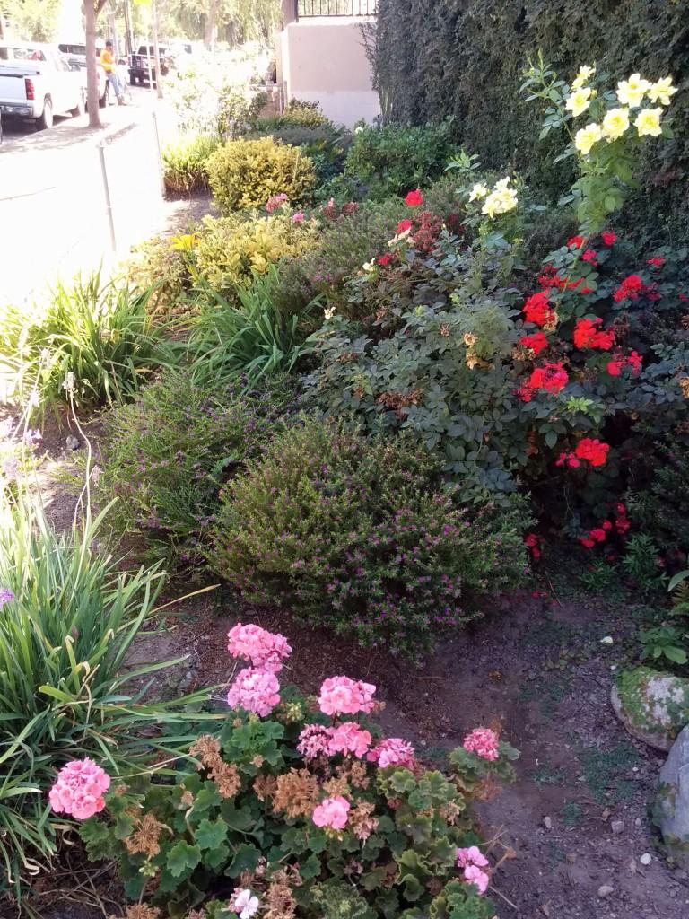 Inspiration mini-garden