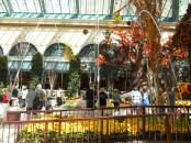 Inside the Bellagio