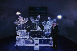One of many ice sculptures