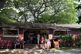 Tropical Farms Hawaii Macadamia Nut Farm