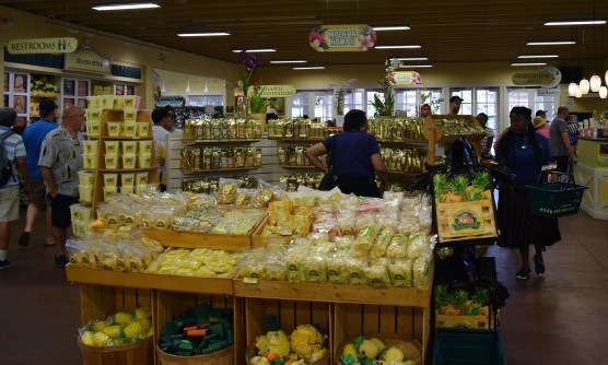 Extensive pinapple-themed gift shop